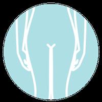 Cirugía Intima Genital Femenina